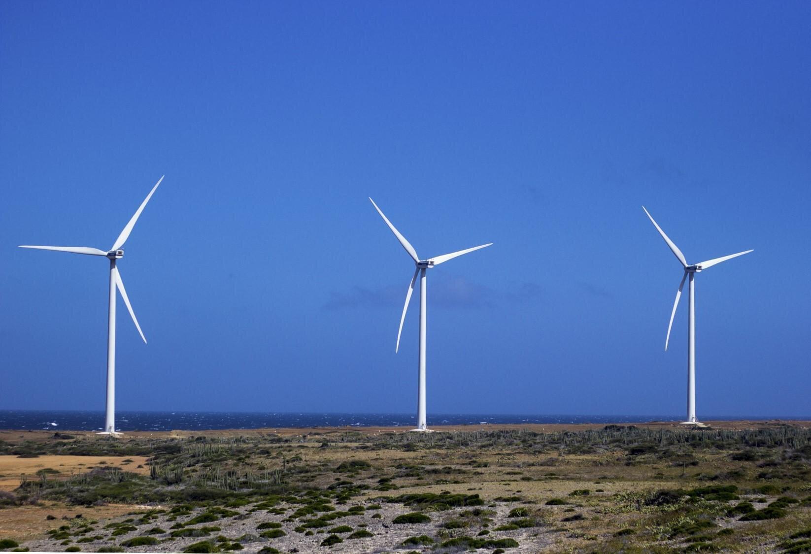 5 anni Carbon Neutrality image3