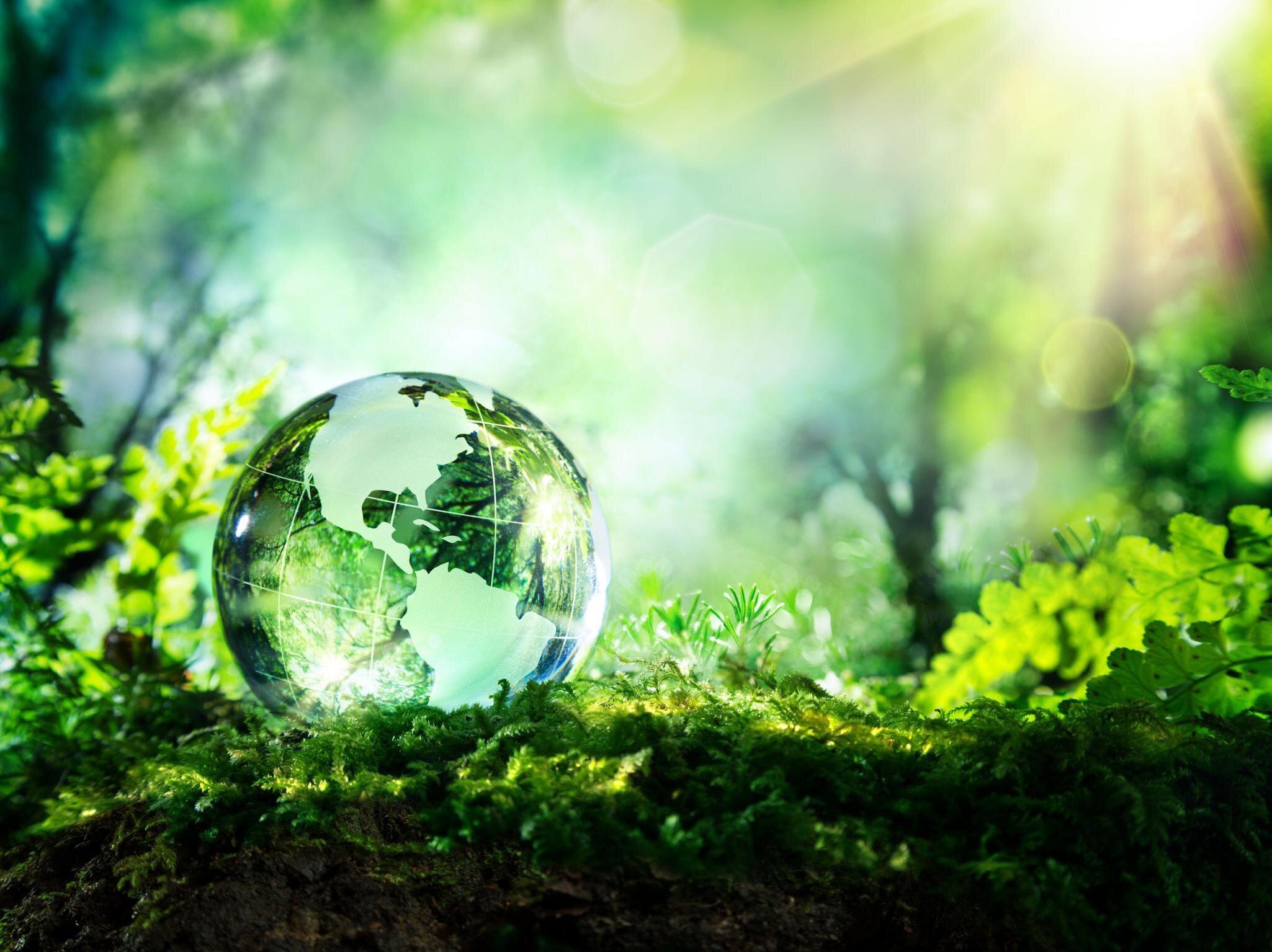 Carbon Neutrality news img2