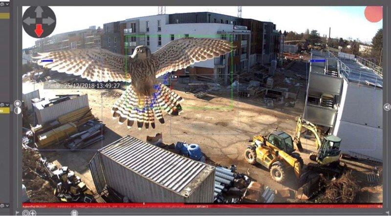 Kamera Mobotix zachytí ptáka