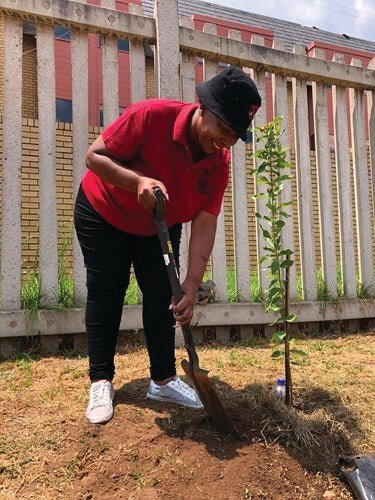 Mrs Portia Tshepe, DOCC YMCA manager, planting a tree at the DOCC YMCA.